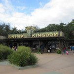 Disney World's Animal Kingdom…Everything from Lions to Dinosaurs!